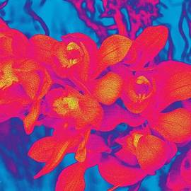 Sonali Gangane - Artful splendor
