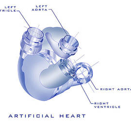 James Christopher Hill - Artificial Heart