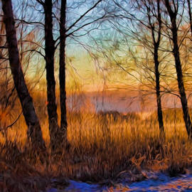 Leif Sohlman - Artistic January Light 2015 a weak sun lightening the winter landscape.