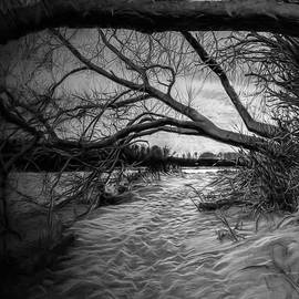 Leif Sohlman - Artistic monochrome paintirly presentation of January light on January 23 2014 in Enkoping Sweden