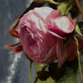 Leif Sohlman - Artistic painterly Pink Rose In Half Profile.2014