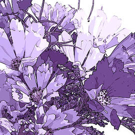 Sandra Foster - Artsy Purple Cosmos