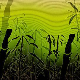 Rois Bheinn - Asian Dream Beautiful Bamboo