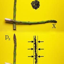 Paul Ge - Asparagus and black rice depicting Heisenberg Uncertainty food physics