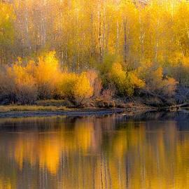 Leslie Wells - Aspen Reflections