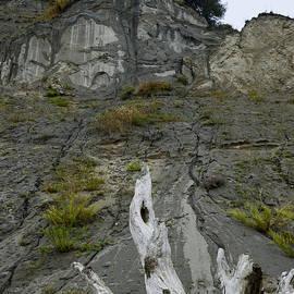 Bob VonDrachek - At the Feet of a Fallen Giant