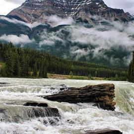Teresa Zieba - Athabasca Falls and Kerkeslin Mountain