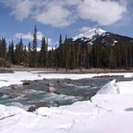 Ian Mcadie - Athabasca Falls Winter