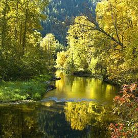 Randy Giesbrecht - Atnarko River Sunrise