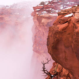 Chad Dutson - Atop Canyonlands