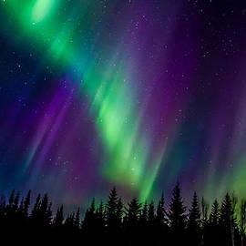 Steve  Milner - Auroras Blaze