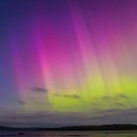 Janne Mankinen - Auroras over a lake