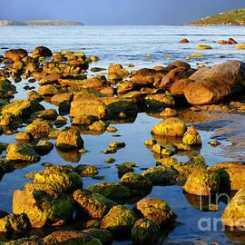 John Wallace - Australian coastline