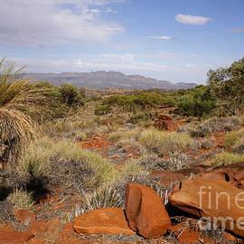 John Wallace - Australian Outback