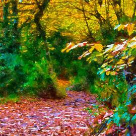 Okan YILMAZ - Autumn - 6