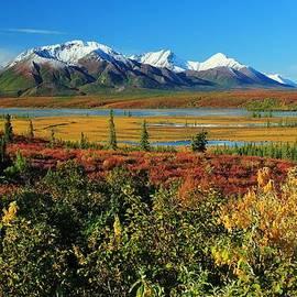 David Broome - Autumn Alaska