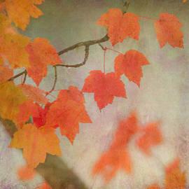 Angie Vogel - Autumn