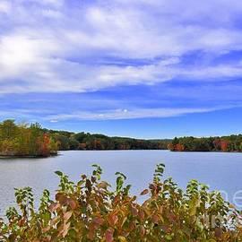 Tammie Miller - Autumn Around the Pond