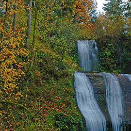 Nick  Boren - Autumn At McDowell Creek Falls