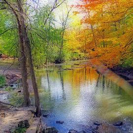 Kay Novy - Autumn At Petrifying Springs