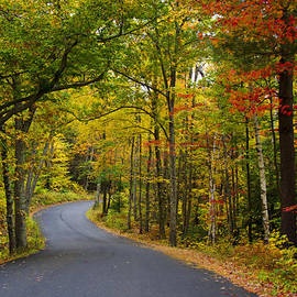 Donna Doherty - Autumn Backroads in New England