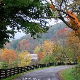 Carolyn Postelwait - Autumn Beauty around the Bend