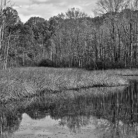 Frozen in Time Fine Art Photography - Autumn Black and White