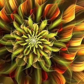 Linda Whiteside - Autumn Bloom