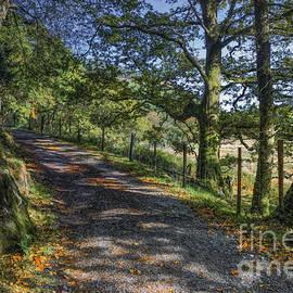 Ian Mitchell - Autumn Countryside