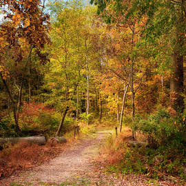 David Lamb - Autumn Day Hike