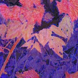Ian  MacDonald - Autumn Evening