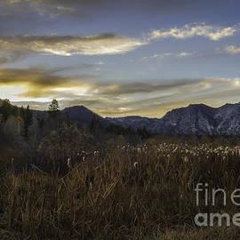 Mitch Shindelbower - Autumn Evening