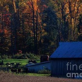 Karen Harris - Autumn Farm
