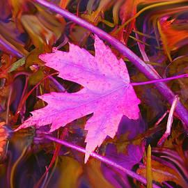Ian  MacDonald - Autumn Fire