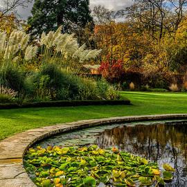 Adrian Evans - Autumn Garden