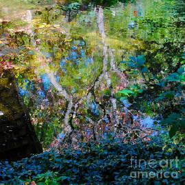 Nancy Mueller - Autumn Garden Reflections 2