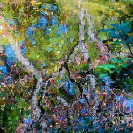 Nancy Mueller - Autumn Garden Reflections
