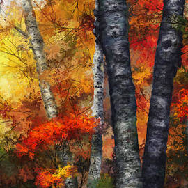 Dale Jackson - Autumn Glory III