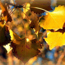 Lisa Holland-Gillem - Autumn Hearts