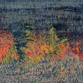 Juergen Roth - Autumn Impressionism