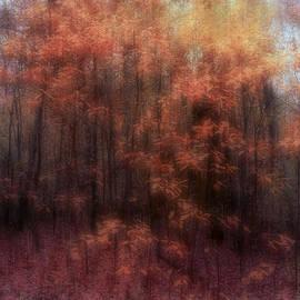 Louise Kumpf - Autumn Impressions