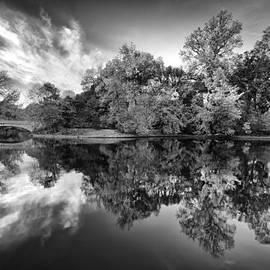 Alexandru Popovschi - Autumn In Black And White