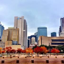 Lisa Fortin Jackson - Autumn in Dallas