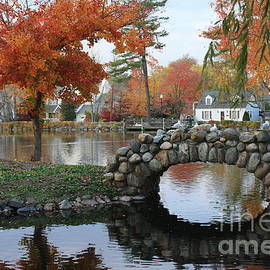 Photographic Art and Design by Dora Sofia Caputo - Autumn in Long Island