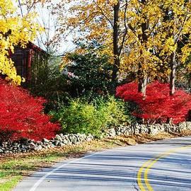 Marcus Dagan - Autumn In New England 1