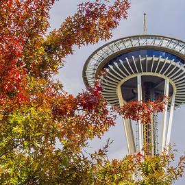 Kyle Wasielewski - Autumn in Seattle