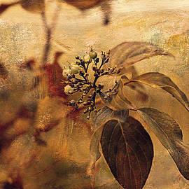 Maria Angelica Maira - Autumn In The Garden