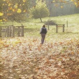 Elaine Teague - Autumn in the Valley