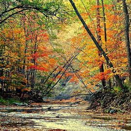 Frozen in Time Fine Art Photography - Autumn in Wonderland
