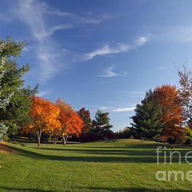 Brandon Alms - Autumn Landscape